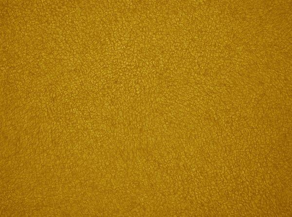 Solar Granule in Color