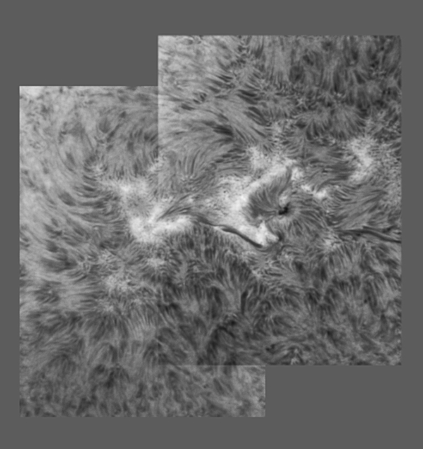Sunspot NOAA 11087