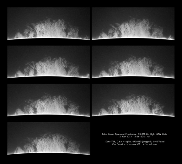 Polar Crown Quiescient Prominence - Jim Ferreira