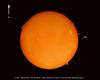 Sun in H-Alpha - Full Disk Mosaic